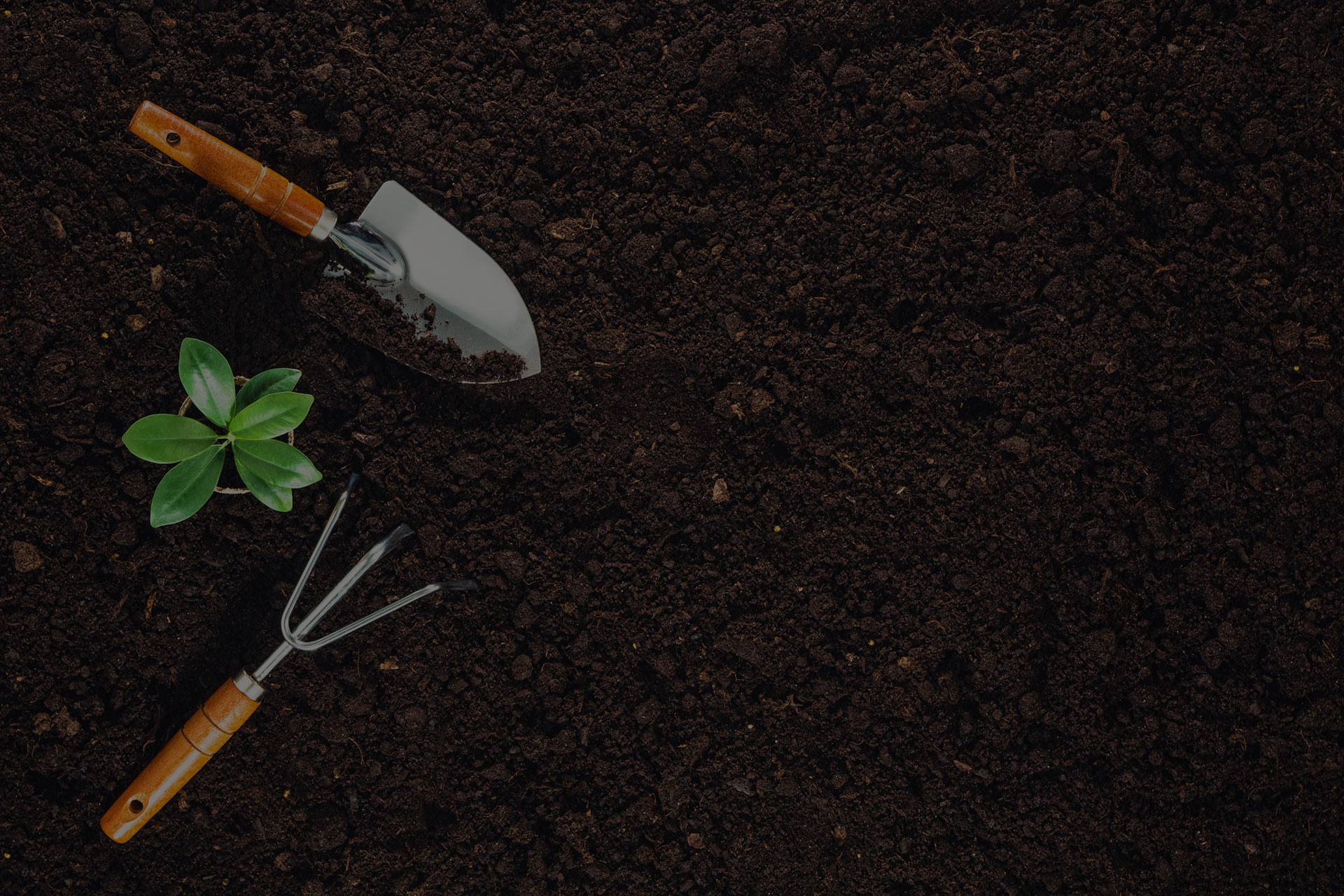 Gardening tools on fertile soil texture background seen from above, top view. Gardening or planting concept.